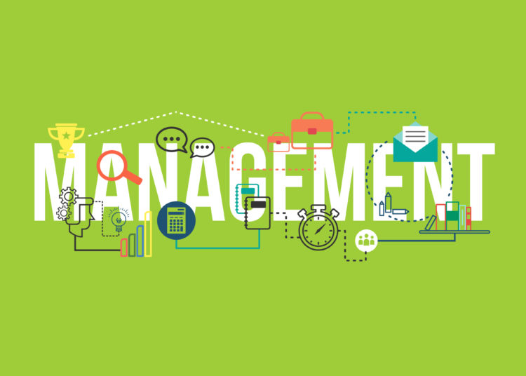 Management graphic on the green background